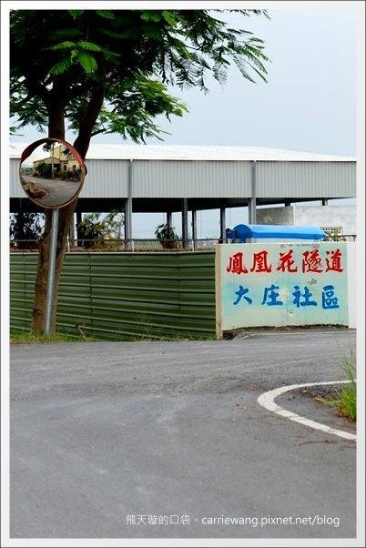 鳳凰隧道 (55).JPG