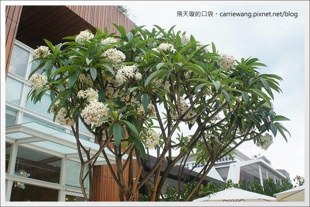 Pear Cafe (4).JPG