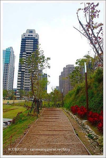 秋紅谷公園 (7).JPG