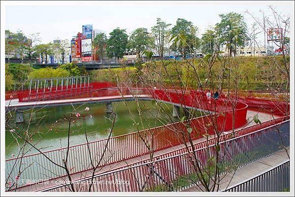 秋紅谷公園 (15).JPG
