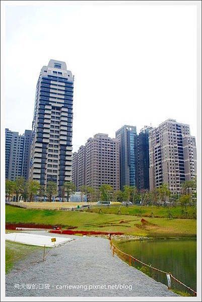 秋紅谷公園 (18).JPG