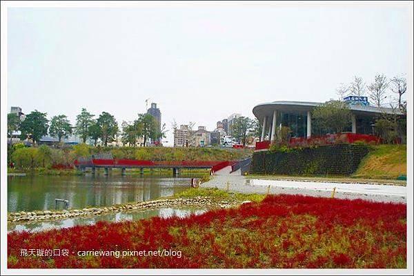 秋紅谷公園 (20).JPG