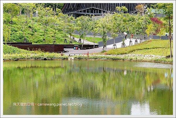 秋紅谷公園 (22).jpg