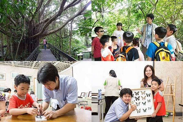【台北士林】芝山文化生態綠園~在都會綠世界探索昆蟲大奧秘‧蝴蝶標本製作