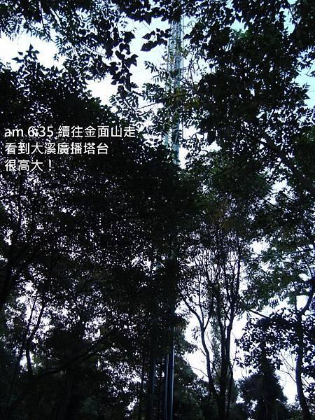 DSC03300