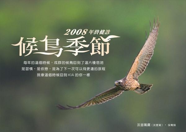 KIA 2008候鳥季節 年終健檢服務_灰面鷲DM.jpg
