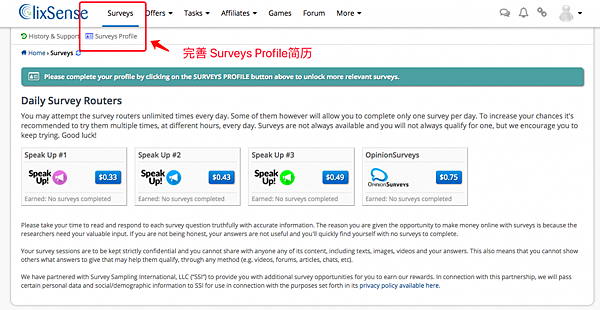 10-finish-Surveys-profile-1024x529.png