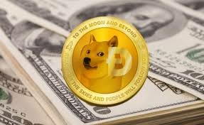 Dog coin.jpg