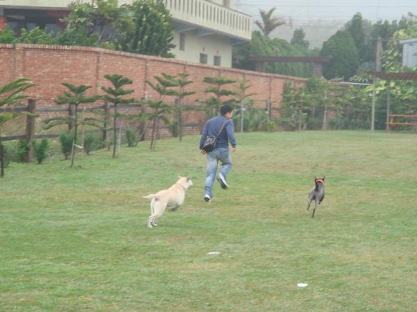 狗主人開始帶狗跑囉!!