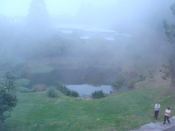 梅峰的池塘