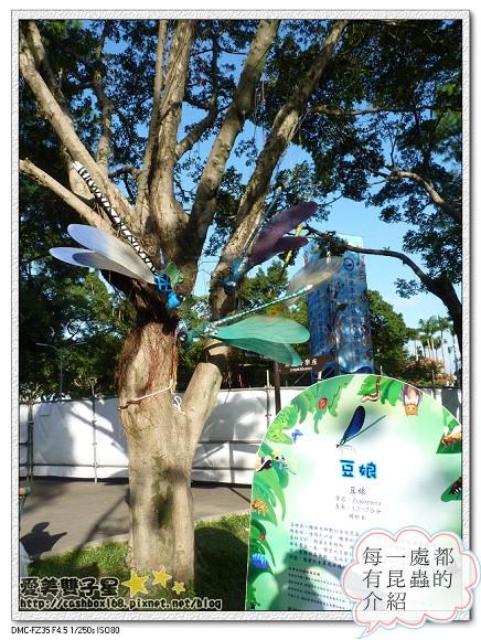 2013紙風車昆蟲展09.jpg