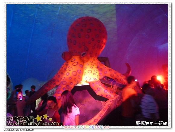2013紙風車昆蟲展28.jpg