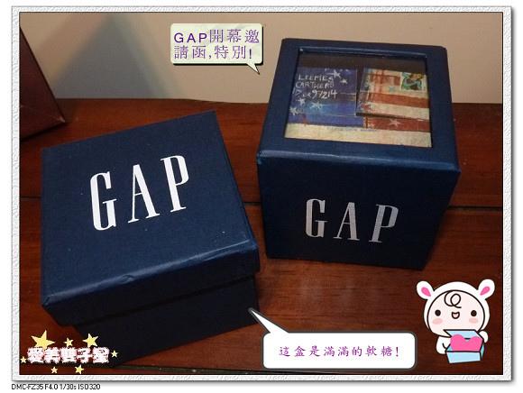 GAP2014-03.jpg