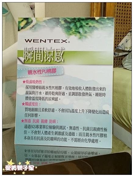 WENTEX冰涼紗03.jpg