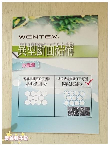 WENTEX冰涼紗06.jpg