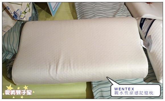 WENTEX冰涼紗18.jpg