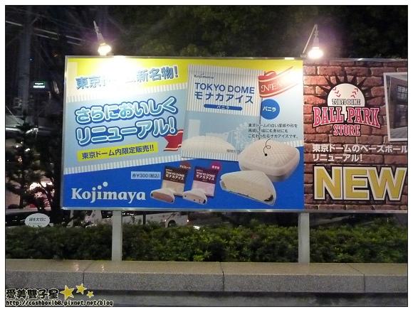 東京巨蛋棒球場38.jpg