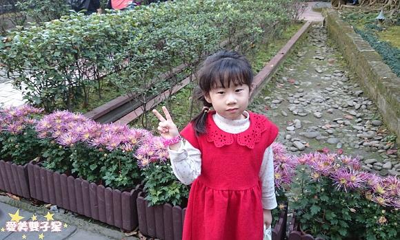 板橋林家花園14.jpg