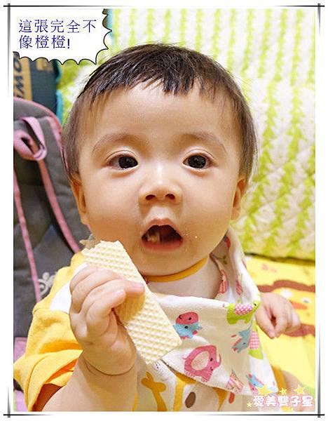 嬰兒餅乾09.jpg