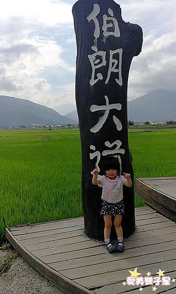 花東三日31.jpg