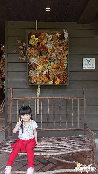 富田農場14.jpg