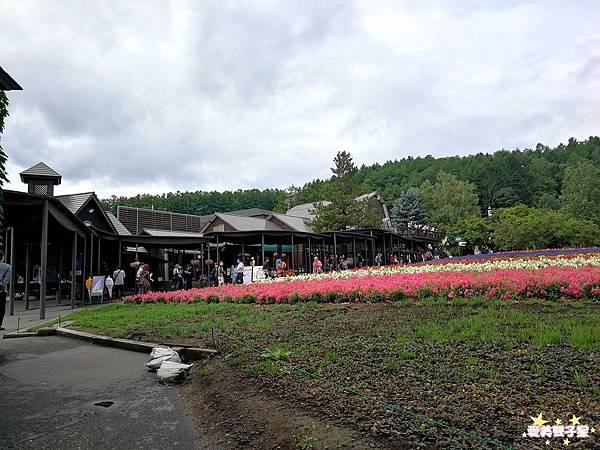 富田農場43.jpg