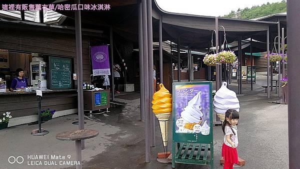 富田農場46.jpg