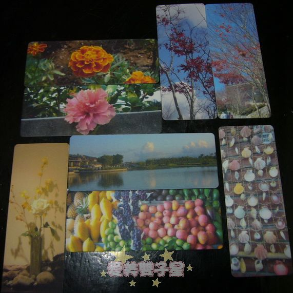 pingcard11.jpg