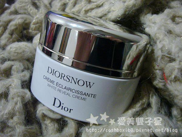 diorsnow01.jpg