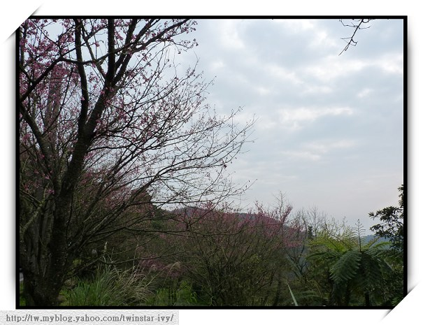 閒聊2010-02-69.jpg