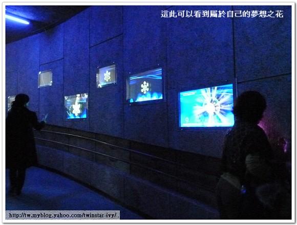 花博夢想館95.jpg