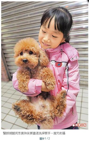 醫師提醒民眾摸狗後要盡速洗淨雙手