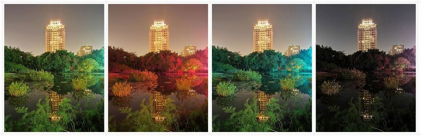 台中植物園夜景
