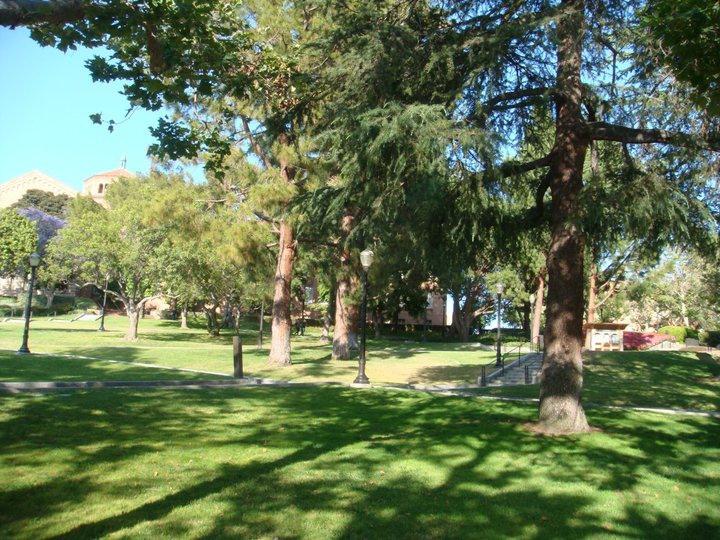 UCLA 1.jpg