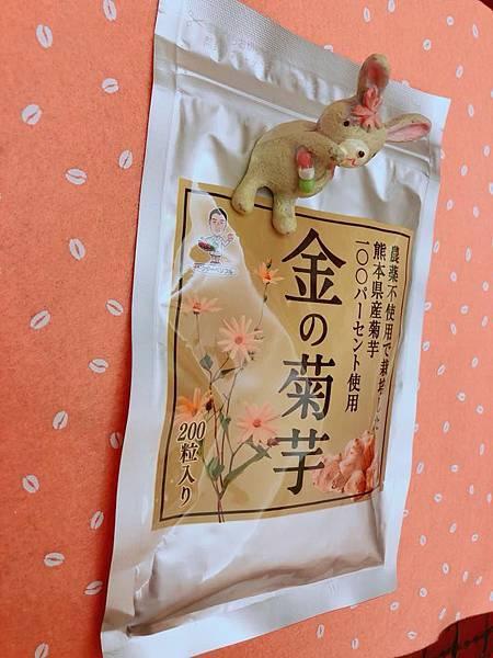 黃金菊芋4.jpg