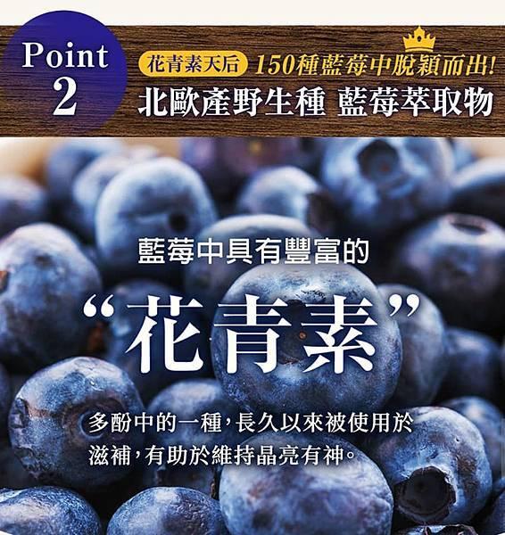 藍莓錠8.jpg