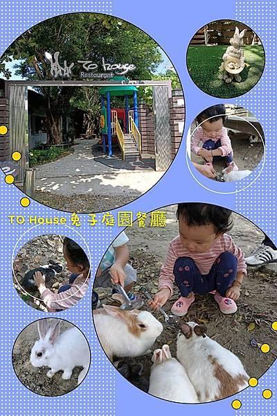 TO House兔子庭園餐廳2.jpg
