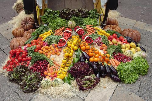 Organic vegetable.jpg