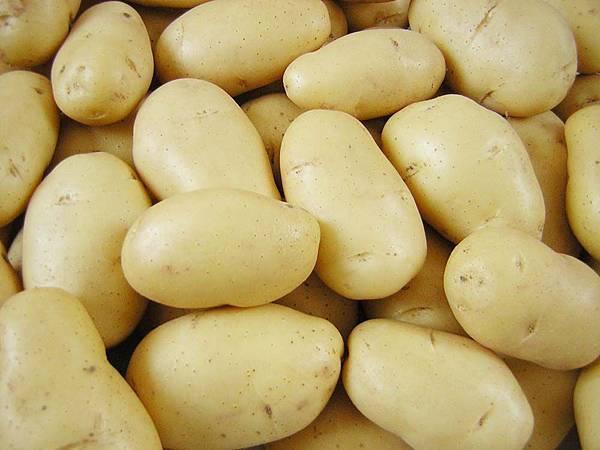 Genetically modified potato 1.jpg