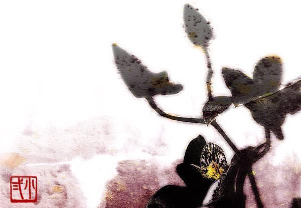 幽蘭操-小圖.jpg