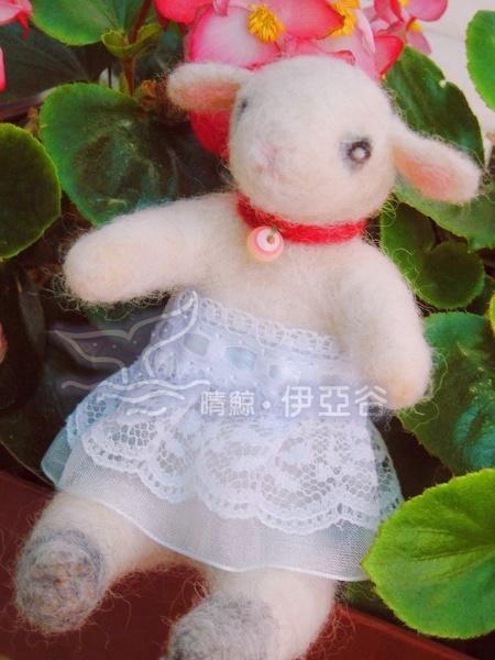小白羊a.jpg
