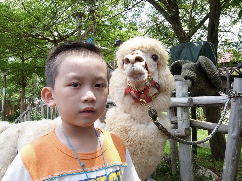 2013-07-06六福村GRD4083.jpg