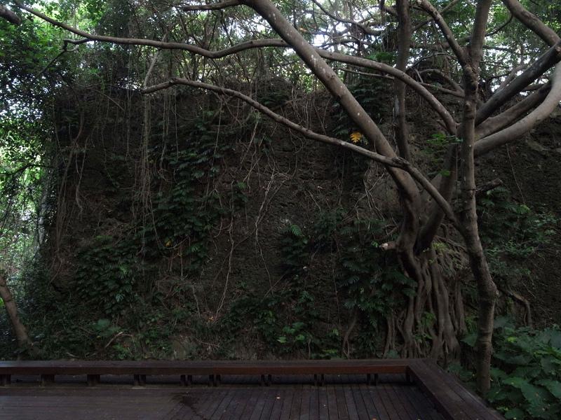 2013-09-08小琉球第二天028.jpg