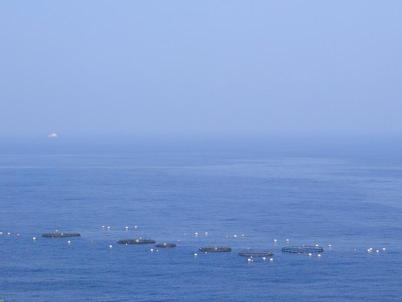 2013-09-08小琉球X10044.jpg