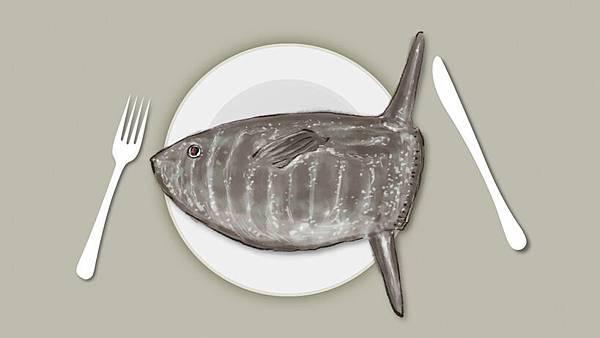 魚05.jpg