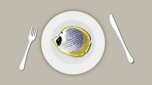 魚011.jpg