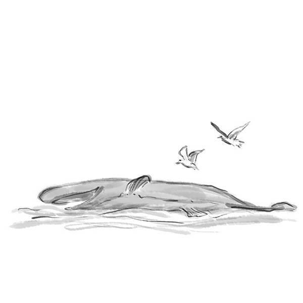 02黑鯨.jpg