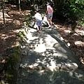 2013-11-09忠義山親山步道063.jpg