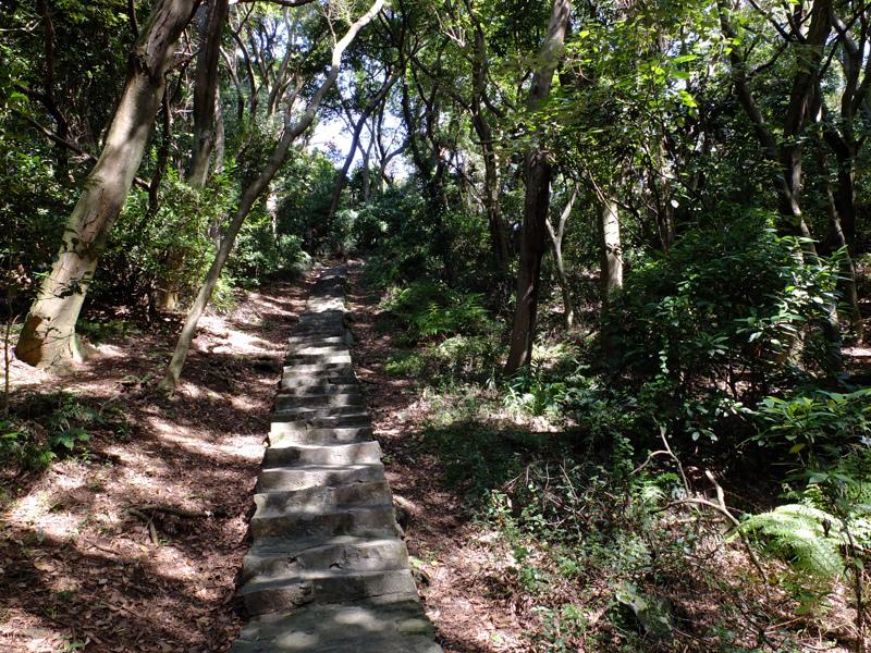 2013-11-09忠義山親山步道074.jpg