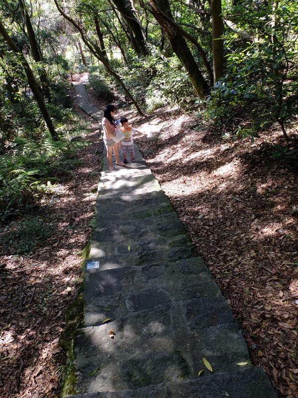 2013-11-09忠義山親山步道075.jpg